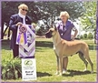 AKC BISS / UKC / INT'L CH. Lagarada's Forever More, ROM, HOF